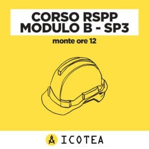 Corso RSPP Modulo B - SP3 - 12 ore