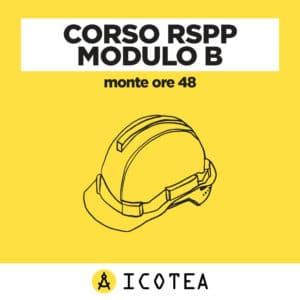 Corso RSPP Modulo B - monte ore 48