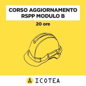 Corso aggiornamento RSPP modulo B 20 ore
