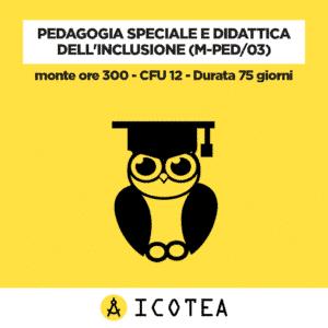 Pedagogia Speciale e Didattica dell'Inclusione (M-PED03) - monte ore 300 - CFU 12 - Durata 75 giorni